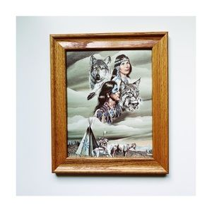Native American framed picture/wall art!✨